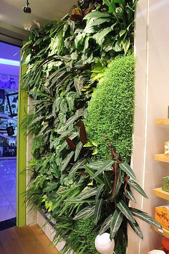 Humko green wall Melvita shop Ljubljana