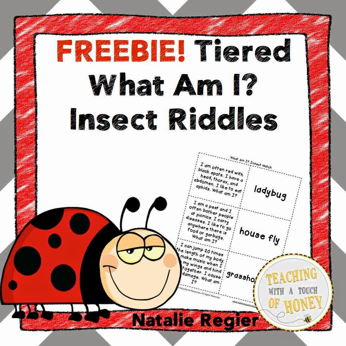 Tiered What Am I Insect Riddles Freebie