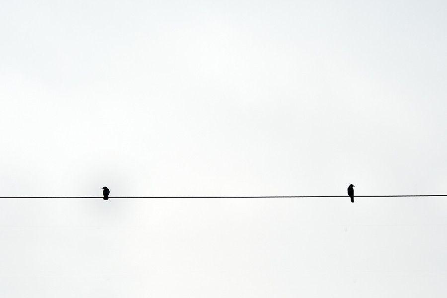 minimalist photography google search minimal pinterest