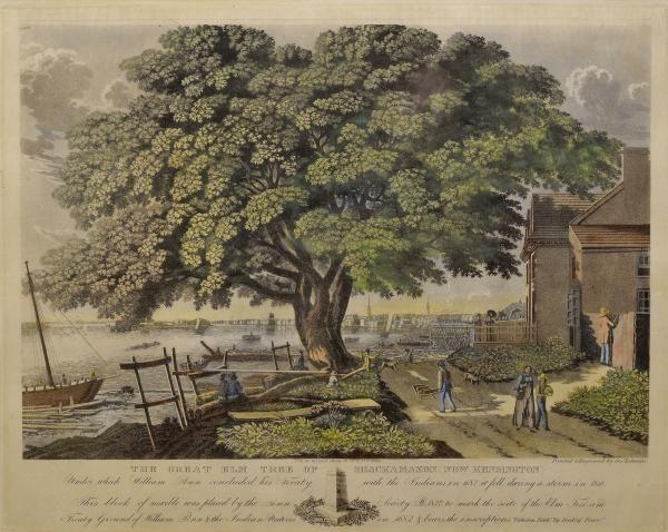 Explorepahistory Com Image Old Things Elm Tree Image