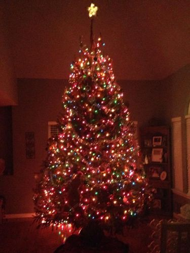 We Love Our Readers Decked Out Christmas Trees Christmas Tree M S Christmas Tree Christmas