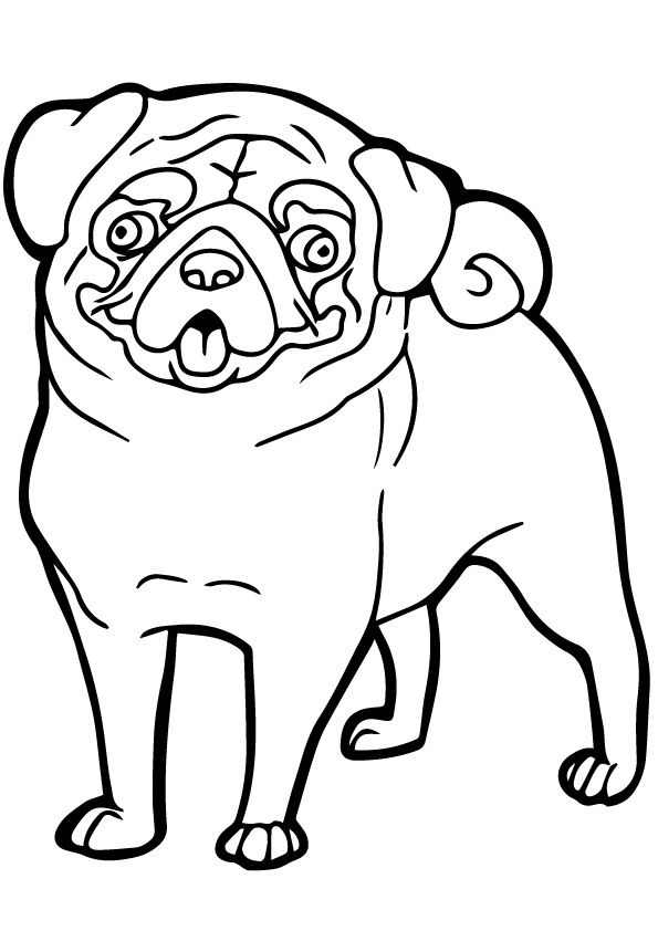 25 Cute Funny Dog Coloring Pages Your Toddler Will Love To Color
