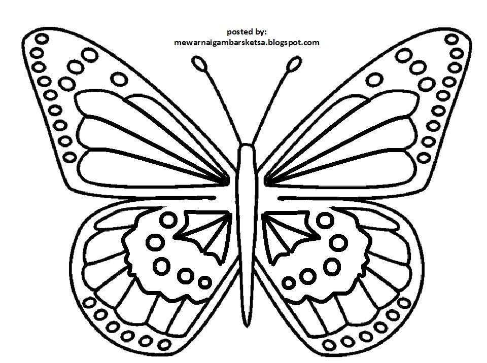 Sketsa Gambar Kupu Kupu Di 2021 Menggambar Kupu Kupu Sketsa Kupu Kupu