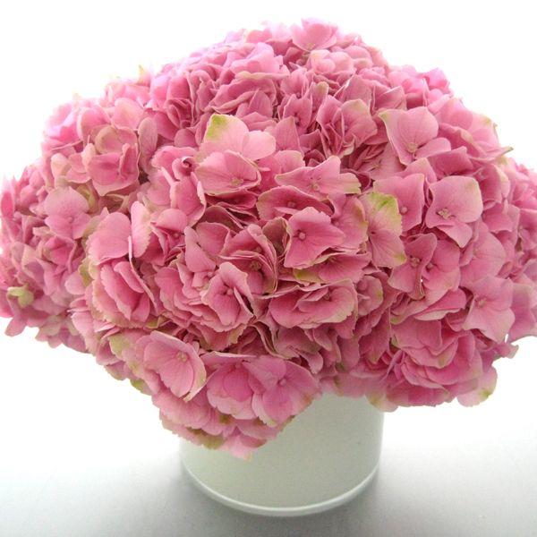 Prom Decor, Wedding And Flower