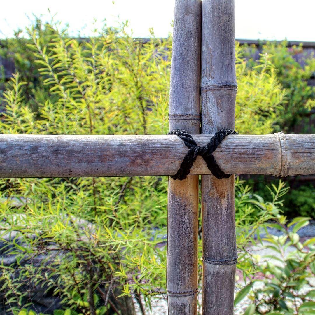 Bambus zaun garten gartenbau kunst nature natur zeitz