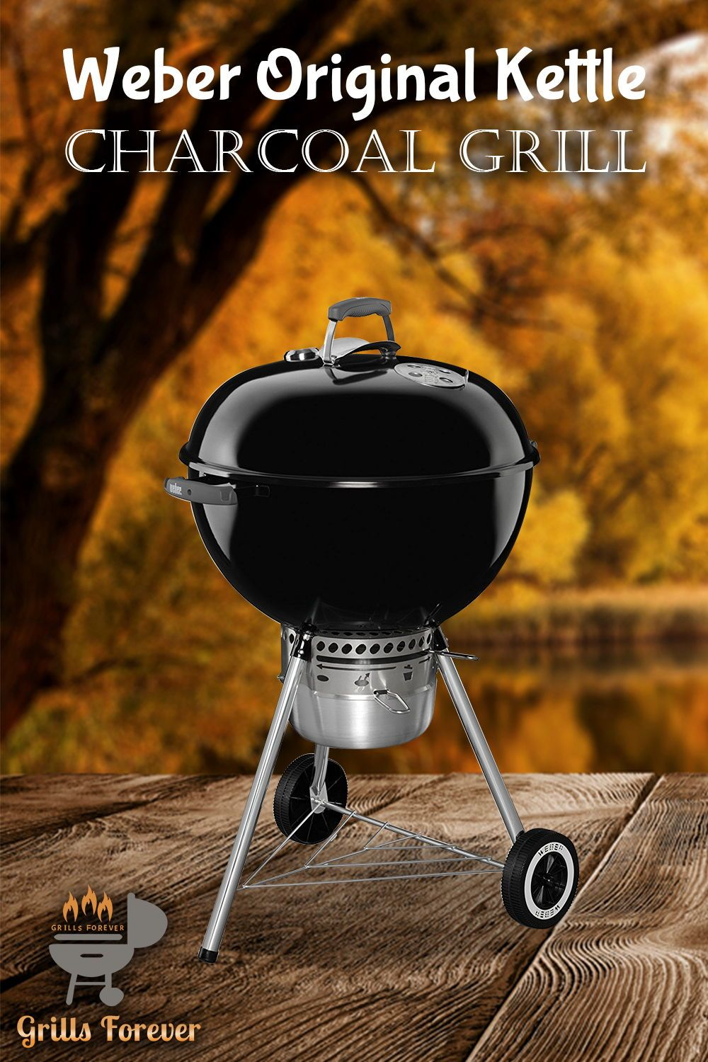 Top 10 Weber Grills (May 2019): Reviews & Buyers Guide in