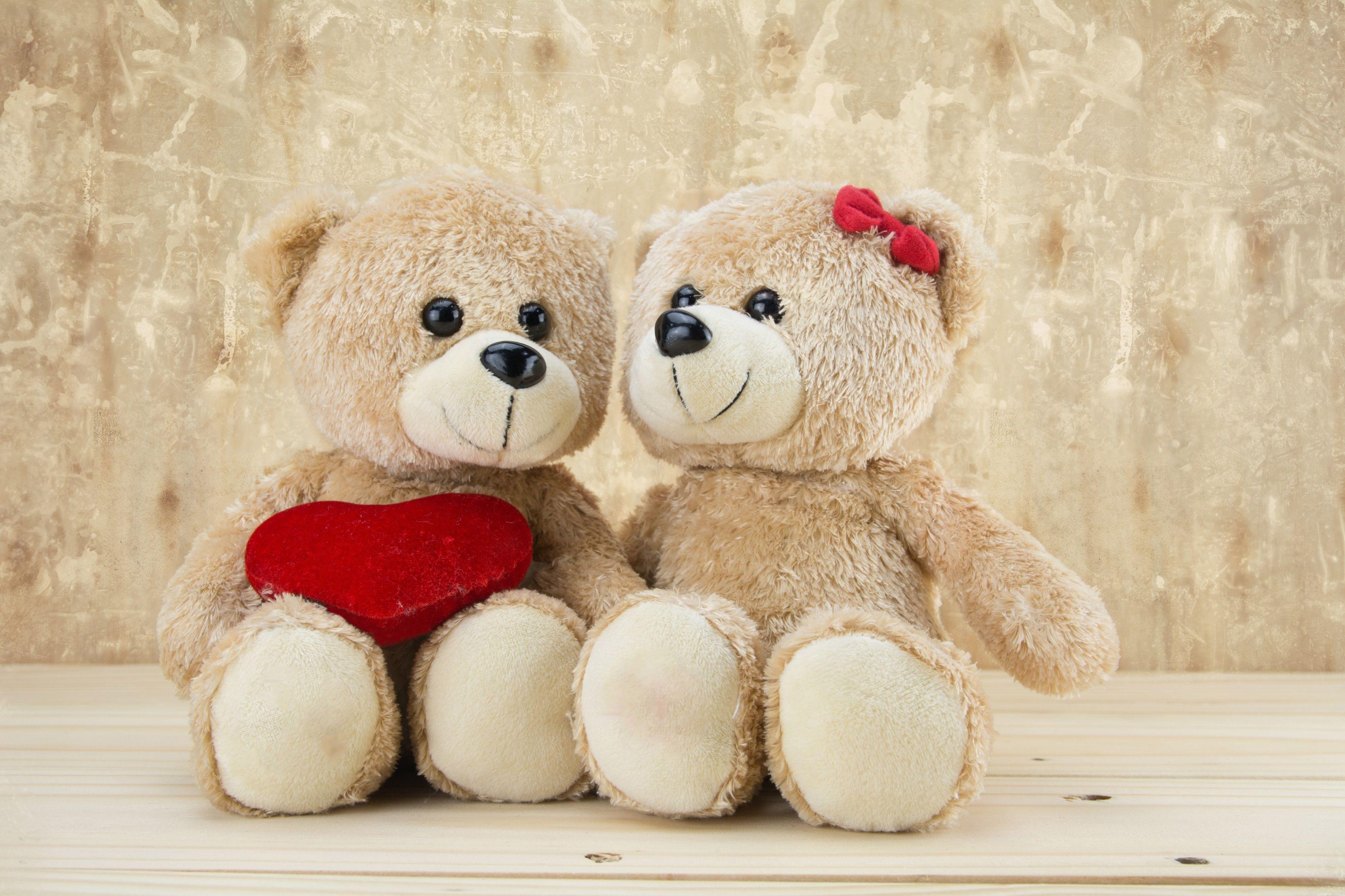 3840x2560 Teddies Couple 4k Full Screen Wallpaper Hd Teddy Bear Wallpaper Teddy Bear Teddy Day