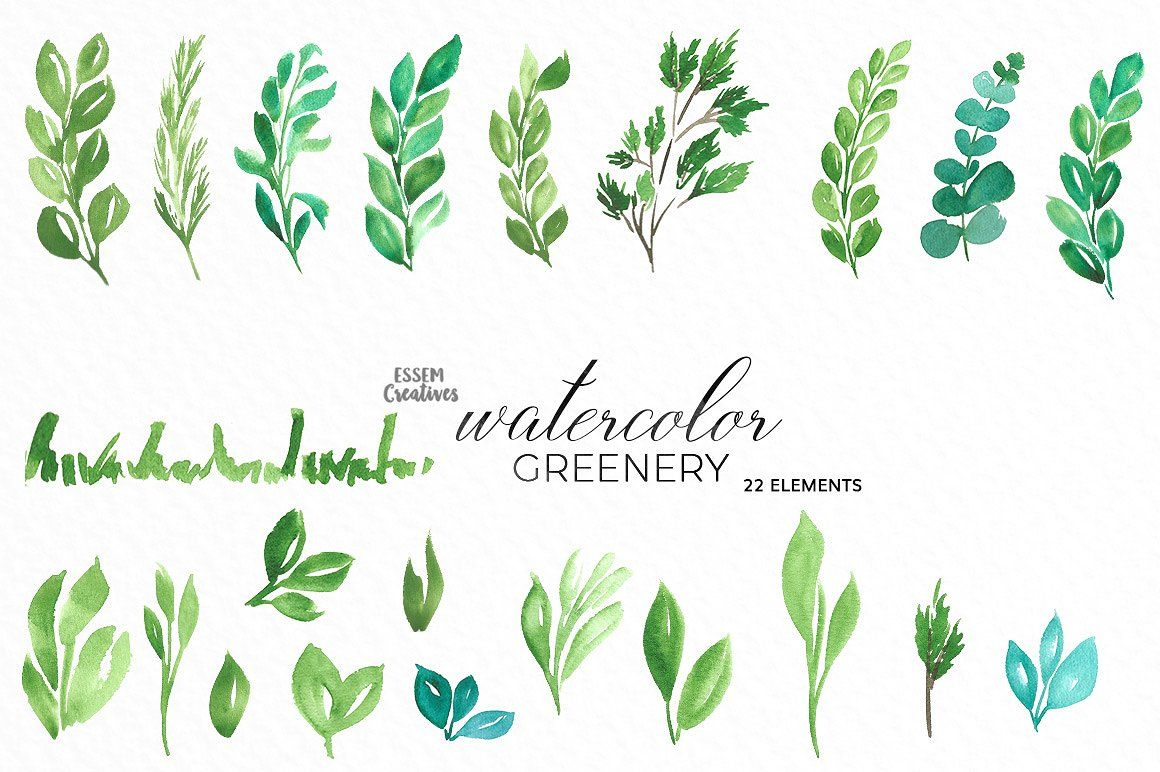 Watercolor Greenery Leaves Clipart Leaf Clipart Clip Art