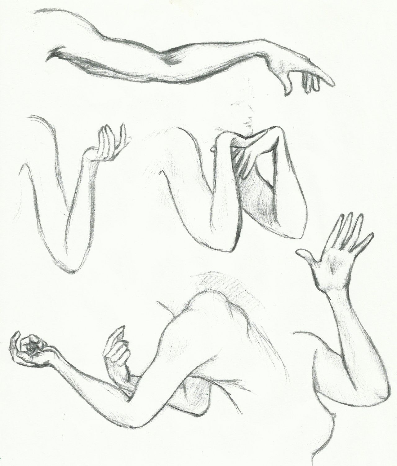 female muscular arm drawings daily sketch arm hand study by