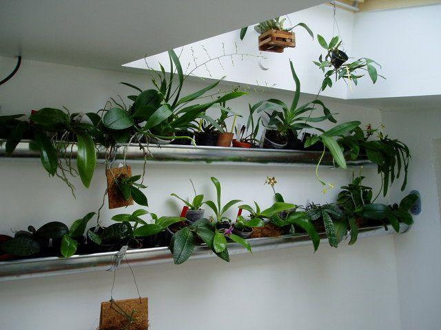 gouttiere d 39 interieur pour fleurs orchidees dans. Black Bedroom Furniture Sets. Home Design Ideas