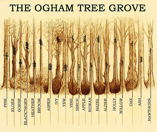 Ogham Tree Grove By Yuri Leitch Celtic Druids Celtic