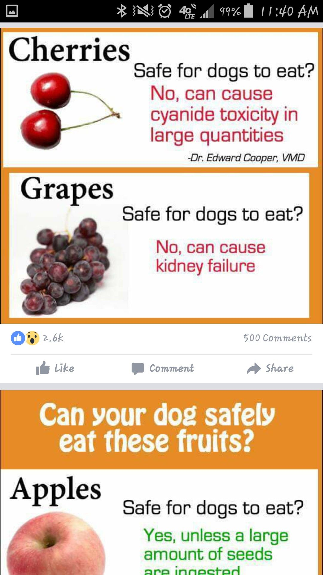 Pin by Emily Kelley on Animals Fruit, Canning, Apple
