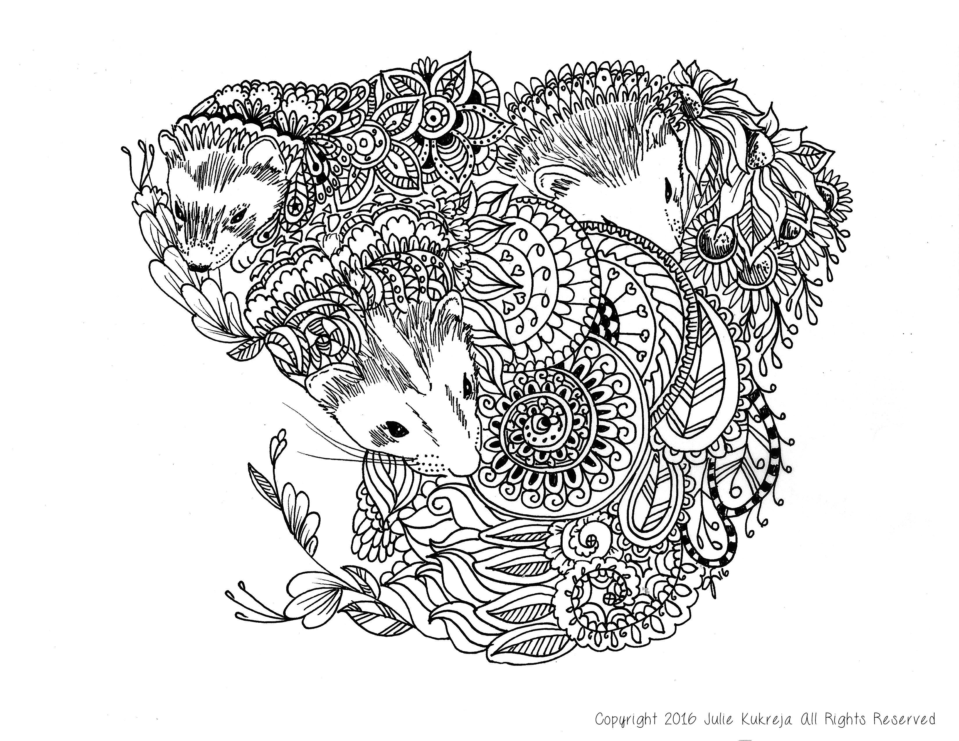 Custom Pet Portrait Coloring Book Page Ferrets By Julie Kukreja