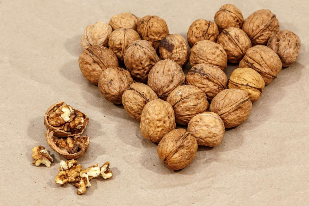 Love Your Body—Go Nuts for Nuts Health benefits of