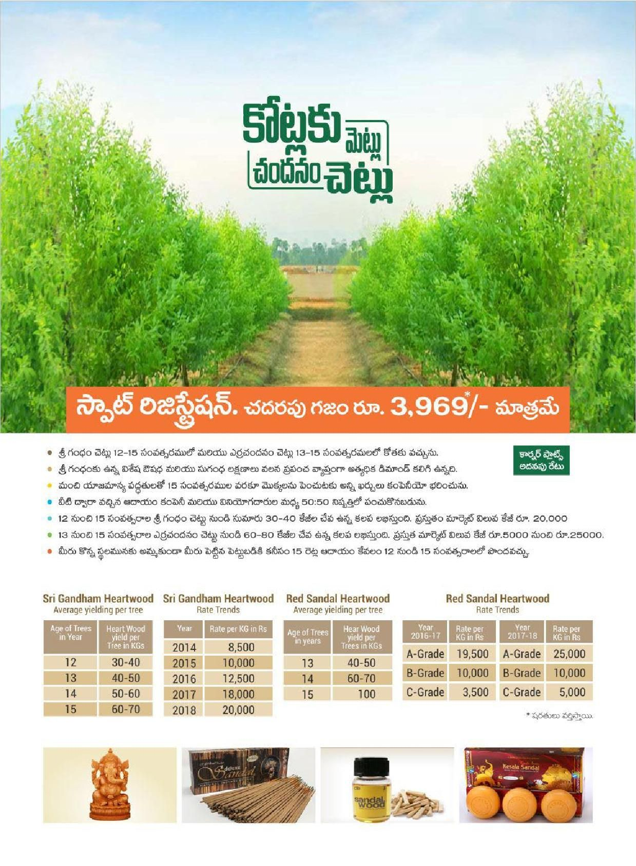 Universal Cash Crops is a 100% agro-based business that deals in