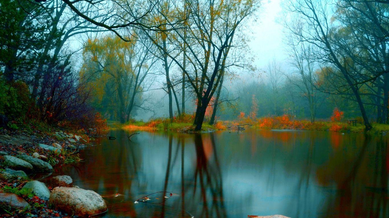 La Laguna Fondos De Pantalla Paisajes Paisajes Fotografia De Bosque