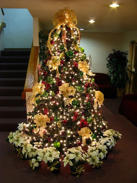 Grapevine Christmas Tree By Mastery Of Maps Via Flickr