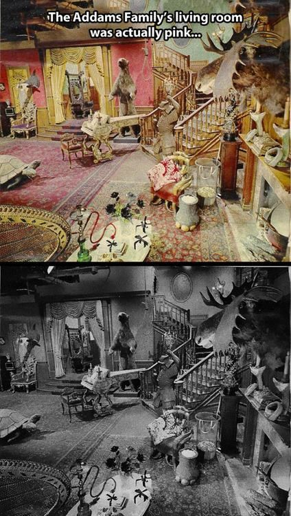 The Addams Family S Living Room Addams Family Funny Pictures