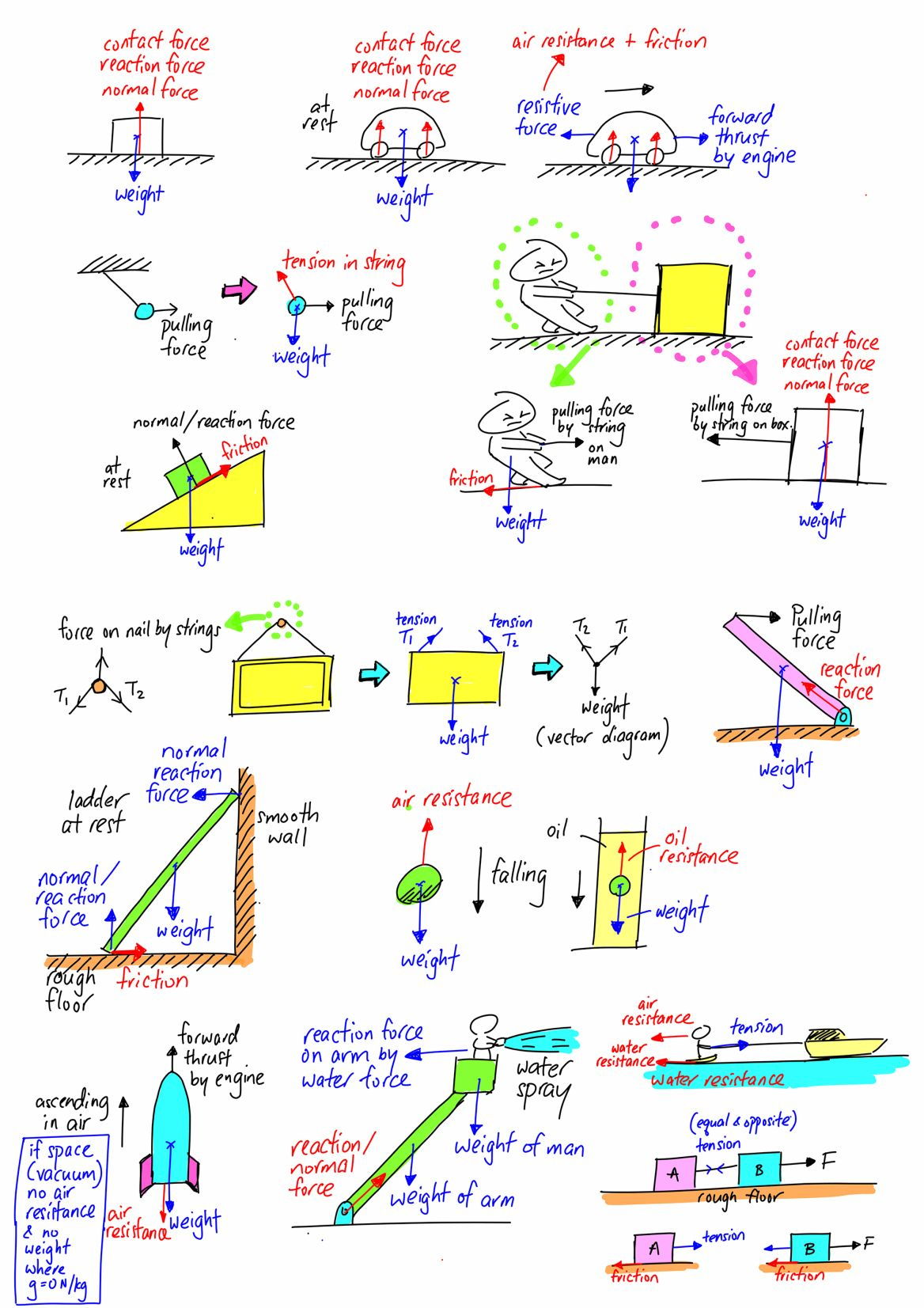 Free Body Diagram Evan S Space In 2020 Body Diagram Basic Physics Physics Classroom