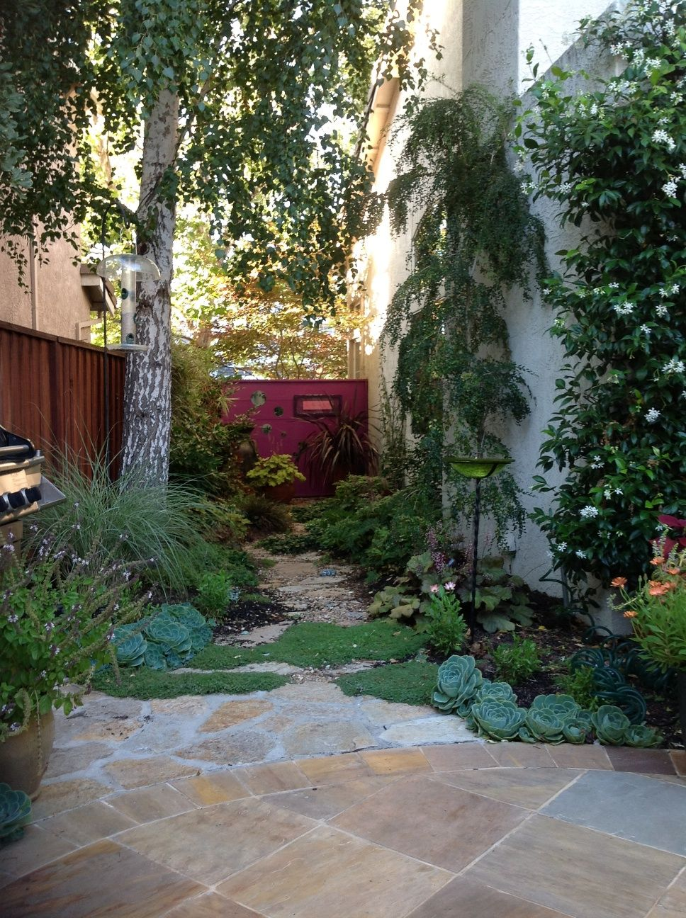 Image of narrow side yard landscaping ideas garden for Small garden lawn designs