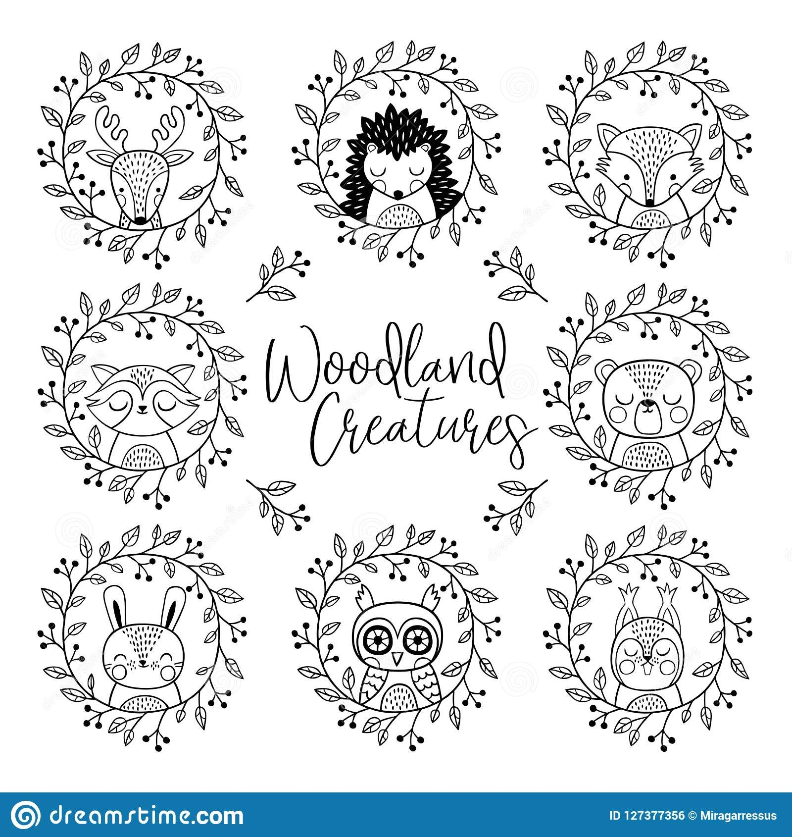 cute woodland animals line drawing Google Search