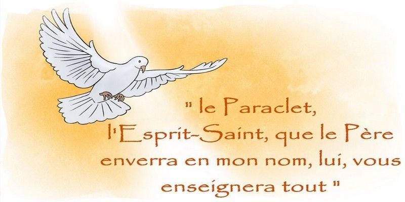 N'oublions pas la Neuvaine au Saint Esprit ! - MonSeigneur et monDieu | Saint  esprit, Prière saint esprit, Neuvaine au saint esprit