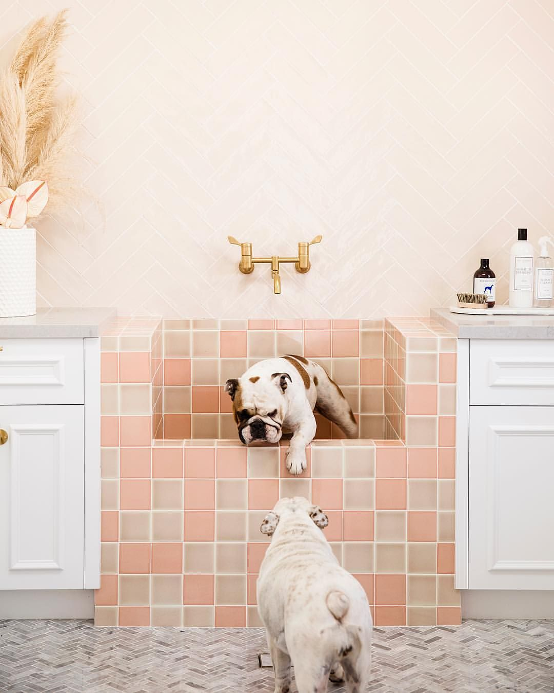 Weekend Is Done And Dusted Kids Showered Dogs Bathed And I Need An Early Night Knackered Bonniesdreamhome Modern Dog Washing Station Dog Rooms Dog Wash