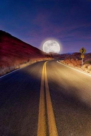 Moon Road, Tucson, Arizona by betsy