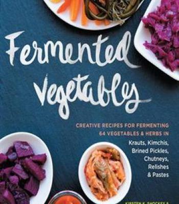 Fermented vegetables pdf cookbooks pinterest explore vegan meals raw vegan and more fermented vegetables pdf forumfinder Gallery
