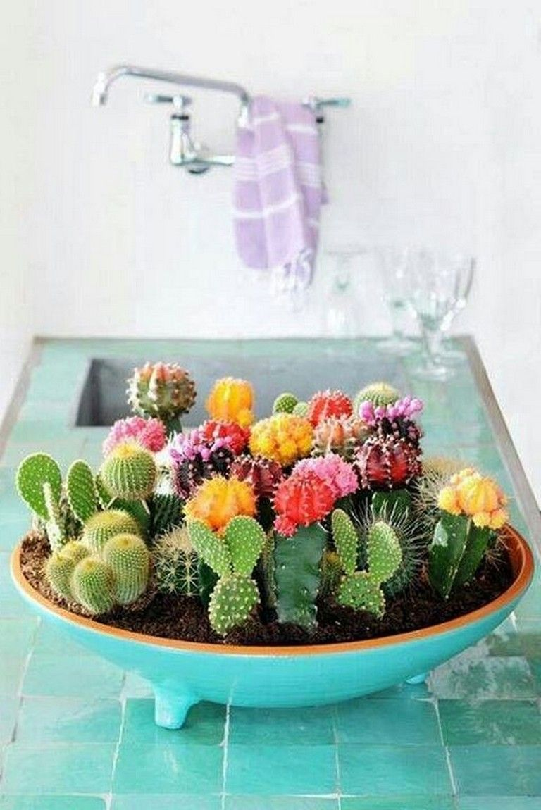27 Beauty Cactus And Succulent Garden Ideas For Indoor Succulent Garden Indoor Succulent Garden Diy Succulent Garden Design