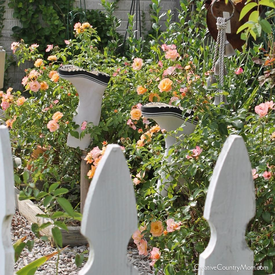 Creative Country Mom's Garden: Kicking Up My Heels In The Rose Garden --- 13,000 FB Followers Today!