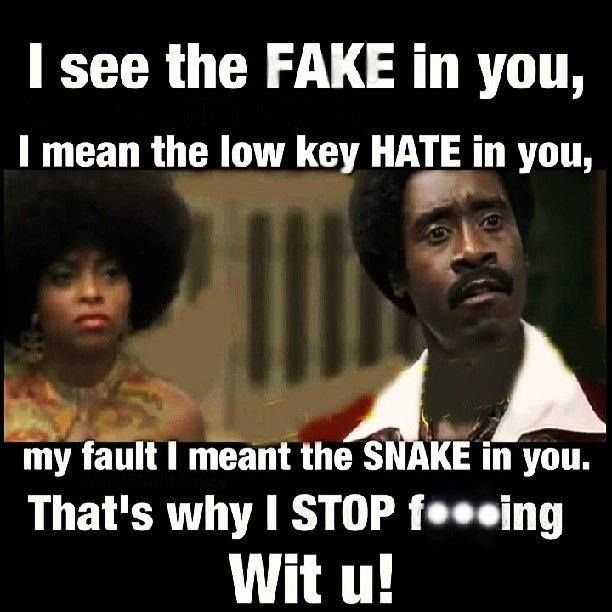 I see the fake in you, I mean the low key hate in you, my fault I meant the snake in you!