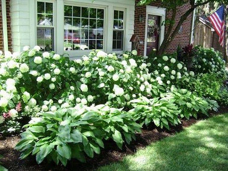 Photo of 43+ Excellent Shade Garden Design Ideas – Page 36 of 45