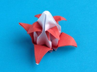 Flower Of An Advanced Origami Christmas Cactus Origami Green