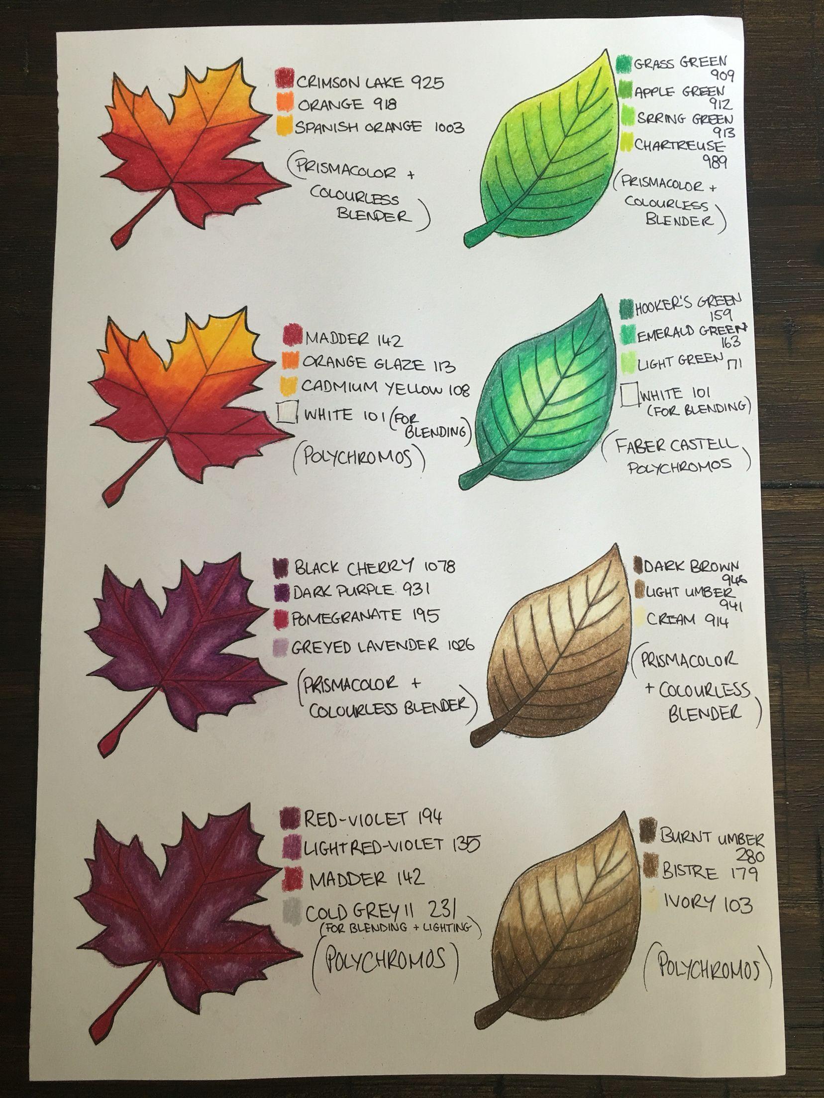 Leaf Colour Chart