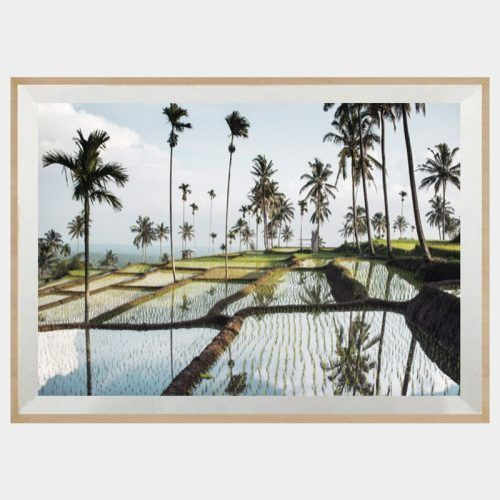 $399 Lombok Fields (60cmx80cm) Iconiko Australia Framed Art ...
