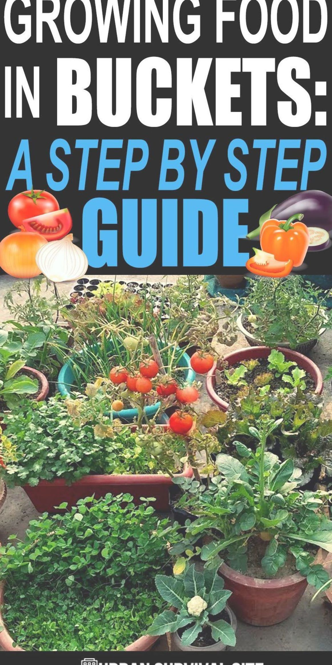 2c7d9102560599815353bed8faa85603 - Grow Food Anywhere The New Guide To Small Space Gardening