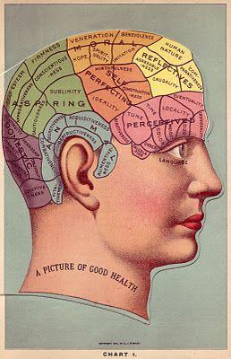 Acting My Vint Age October 2011 Clip Art Vintage Phrenology Phrenology Head
