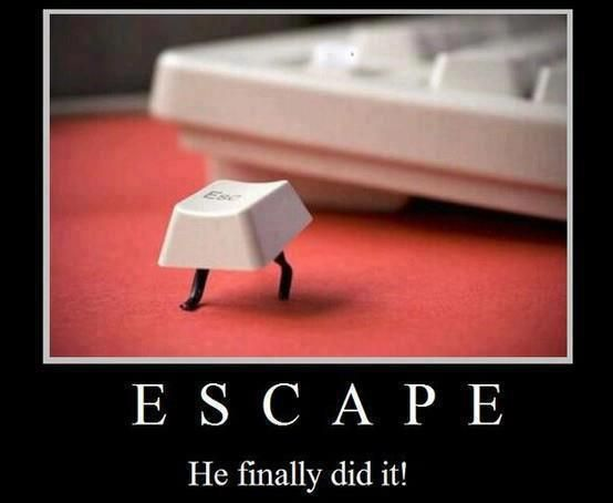 Escape.... this is funny