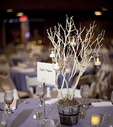 Image Result For Winter Wedding Ideas On A Budget Winter Wedding