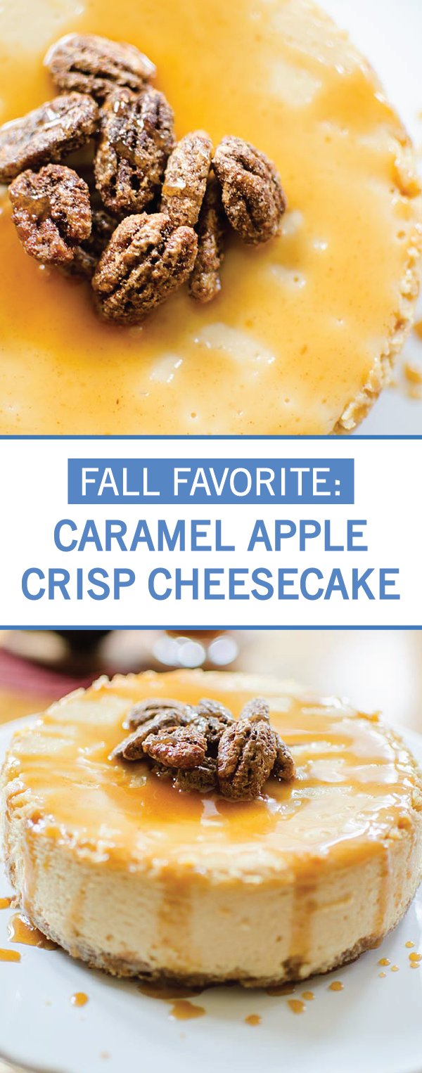 This fall, indulge your sugar craving with this easy recipe for Caramel Apple Crisp Cheesecake. Graham crackers and cinnamon come together to form an easy crust. Then, combine cream cheese, vanilla, apple juice, and pecans to create the rich, indulgent dessert filling. Finally, top with homemade caramel sauce and whipped cream before serving.