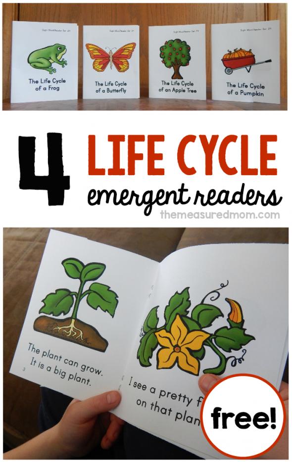 Life Cycles - 4 new sight word books | kindergarten ideas ...