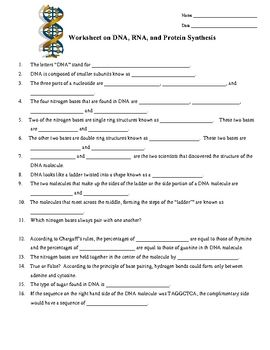 DNA, RNA, Protein Synthesis Worksheet / Study Guide (With ...