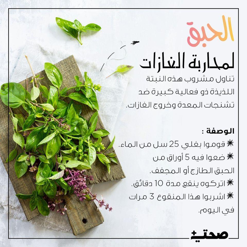 الحبق لمحاربة الغازات Nutrition Health Herbs