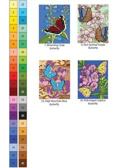 Creative Haven Butterflies Color By Number Coloring Book By Jan