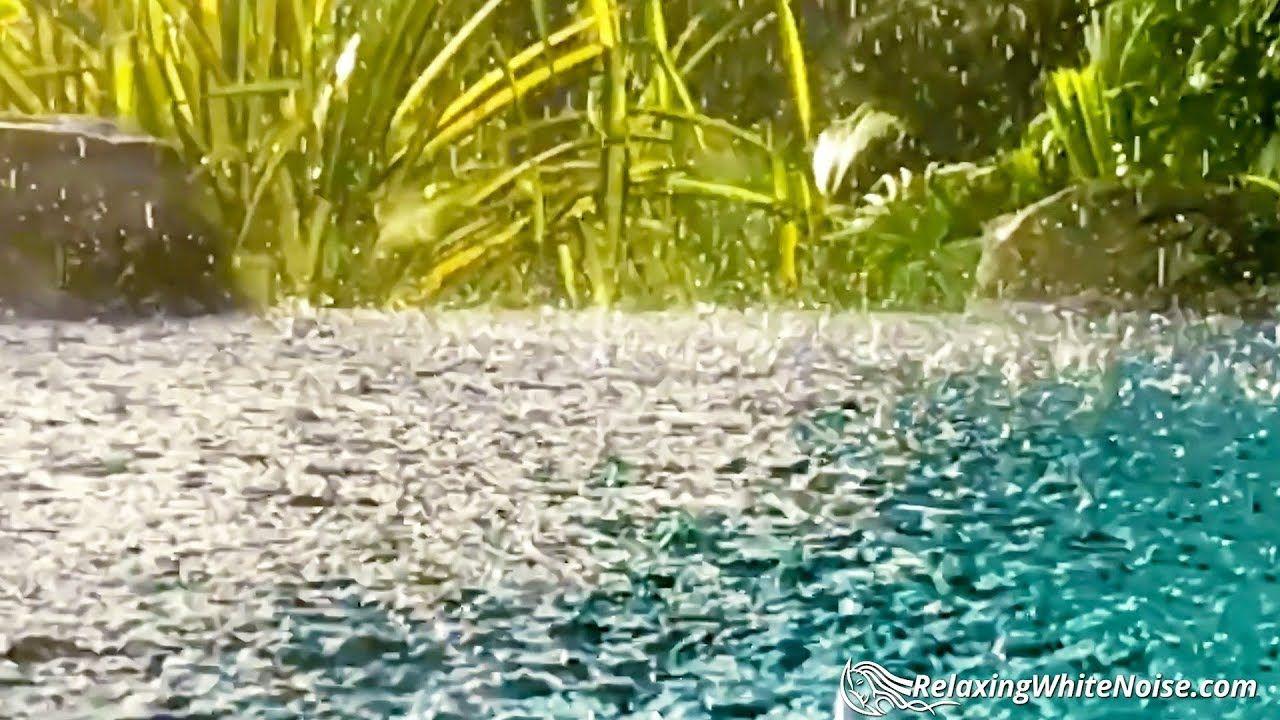 Thunder Sounds with Rain on Pond Sleep, Study, Focus
