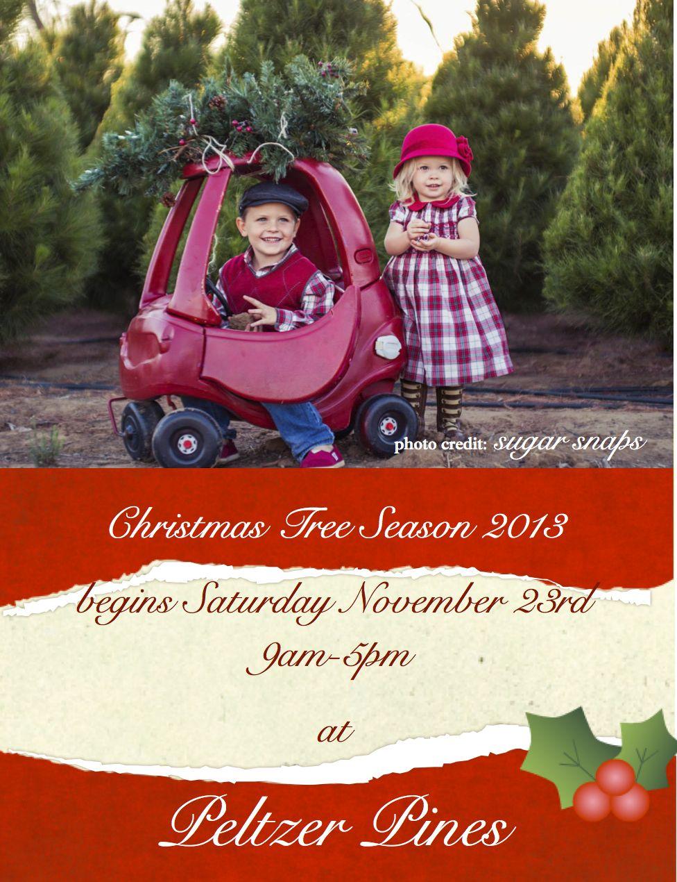 Pin On Our Christmas Tree Farms