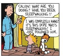 Calvin and Hobbes (DA) - I was completely awake! It's this dope who's sleepwalking! I just followed him.
