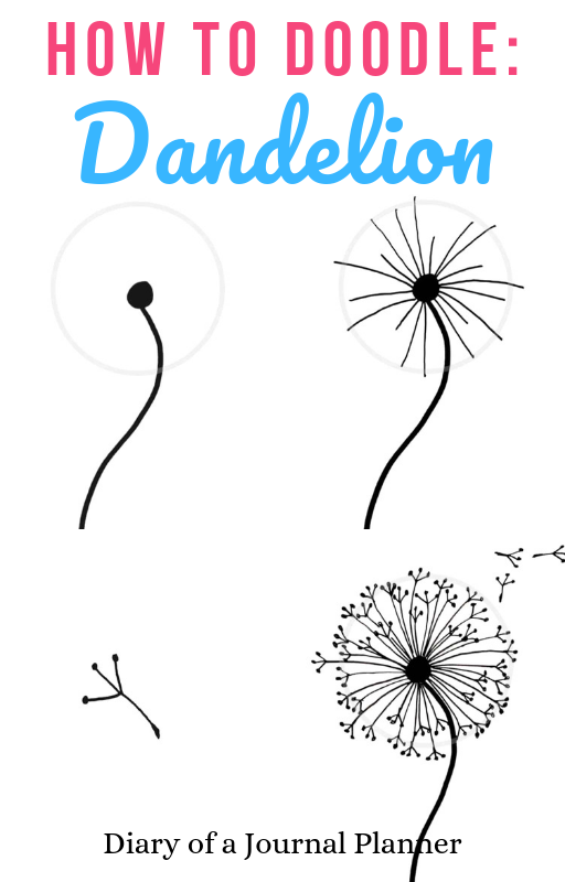 Photo of How to draw a dandelion: Easy dandelion drawing step by step tutorial #dandelion…