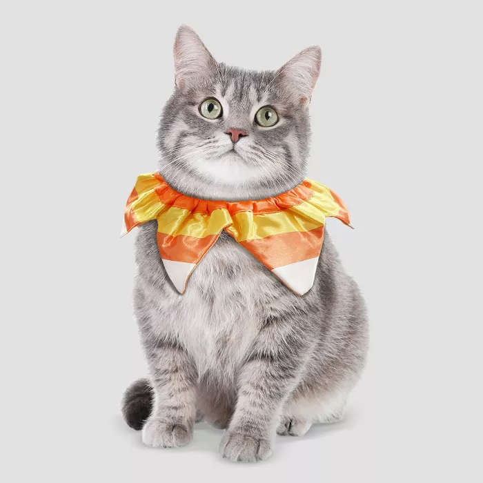 Candy Corn Ruff Halloween Cat Costume Hyde & EEK